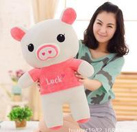60cm Cartoon couple pig plush toy Pink pig blue pig doll Girls Birthday Gift