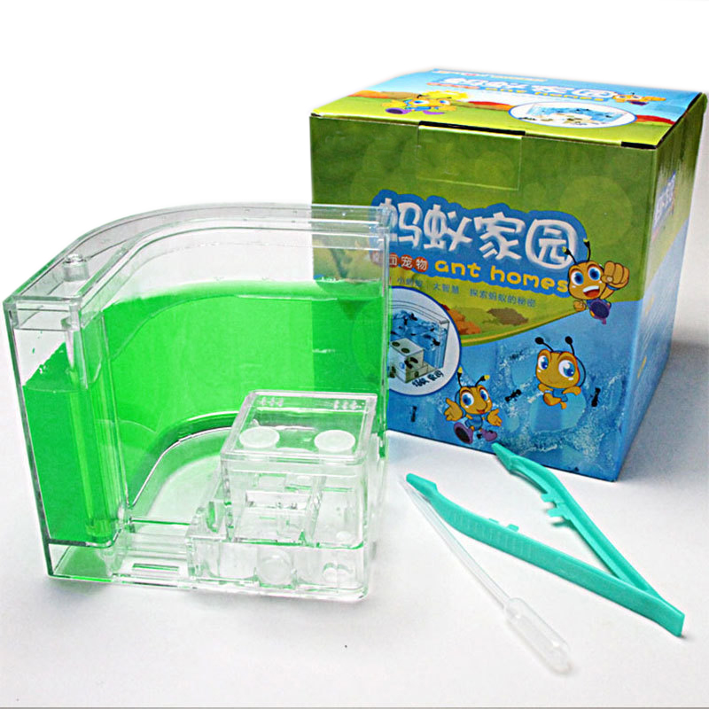 Acrylic Ants Farm Ants House Castle Colorful Insects Terrarium Ant Cage Insects Box Nursery Ecological Kid Educational Model Toy7