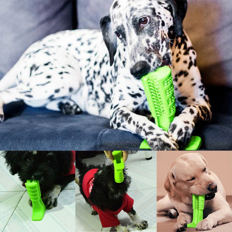 Hund Spielzeug Dropshipping Bürsten Stick Hund Pinsel Effektive Zahnbürste für Hunde Haustiere Mundpflege Hund Bürsten Stick