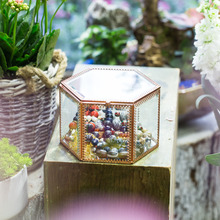 Modern Vintage Faceted Hexagonal Prism Mirrored Brass Glass Fashion Necklace Jewelry Ring Diy Display Box Desktop Terrarium Pot