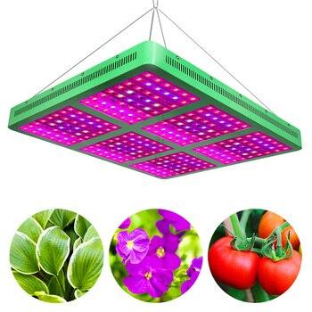 300W 600W 1200W 1800W LED Lampu Pertumbuhan AC85 265V Daya Tinggi Spektrum Penuh Tumbuh Lampu untuk Indoor Tumbuh Tenda Lampu Aquarium