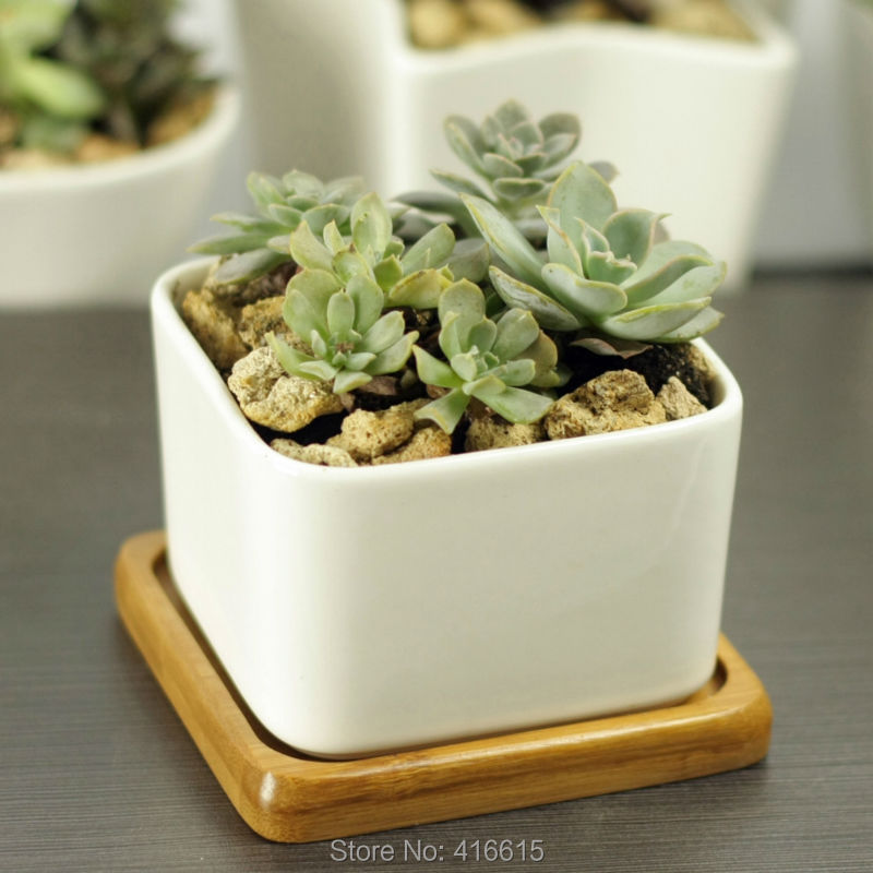 Where To Buy Ceramic Planters Part - 43: Simple White Square Large Ceramic Flower Pots With Bamboo Pot Tray Cute  Desktop Decoration Succulent Planter