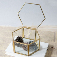 Geometrik şeffaf cam mücevher kutusu takı organizatör tutucu masaüstü etli bitkiler konteyner ev takı depolama