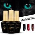 Azure Beauty 12ML Chameleon Cat Eyes Nail Gel Polish Long-lasting Soak Off UV/LED Magnetic Gel Varnish DIY Nail Art Gel Polish
