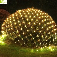 DHL 8Mx10M 2600Led Christmas Garlands LED String Fishing Net Lights Fairy Xmas Party Garden Wedding Decoration Curtain 220V