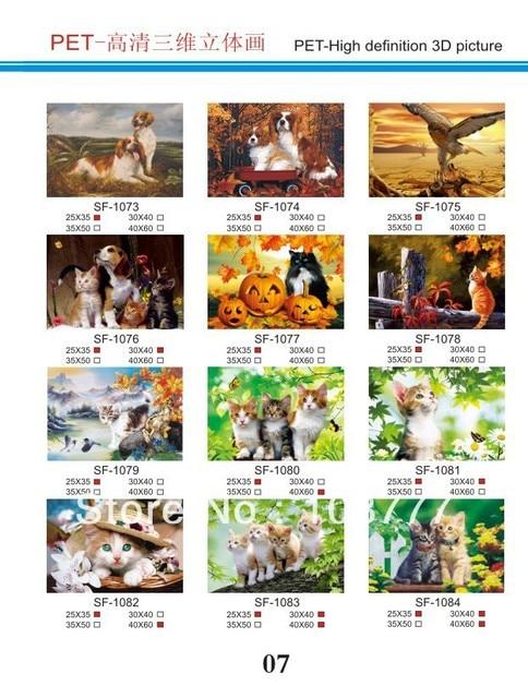 HD 3D stereoscopic paintings/3D picture/size30*40/Retail orwholesale /1081