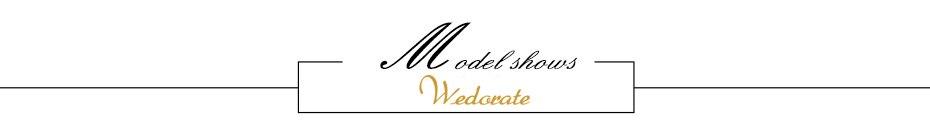 4.Model