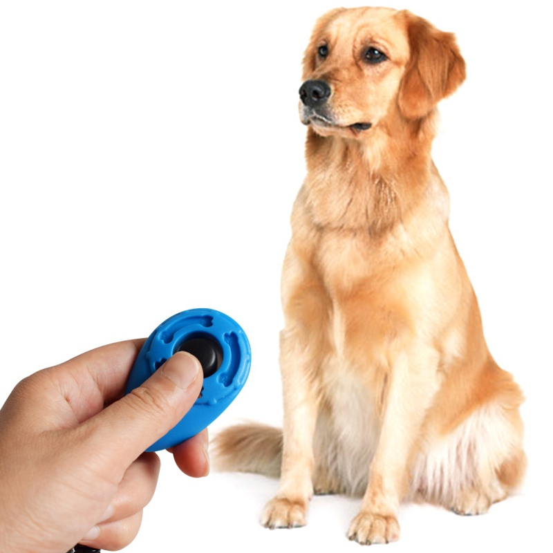 Dog Training Big Button Clicker with Wrist Strap Click And Train Dog Cat HI