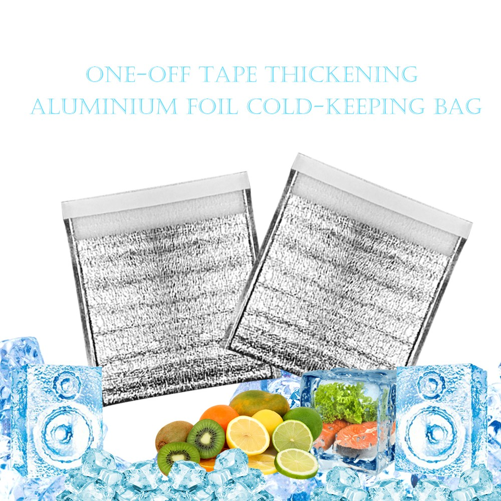 30X35cm Insulated Bags Easy Zip Lock Aluminum Reusable Picnic Hot /& Cold Pouch