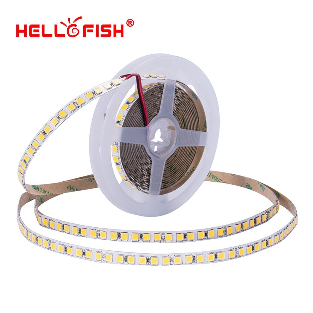 5054 led bande 5 m 120 LED lumière imperméable à l'eau DC 12 v lumière flexible bande Haute luminosité lumières et éclairage bande Bonjour Poissons