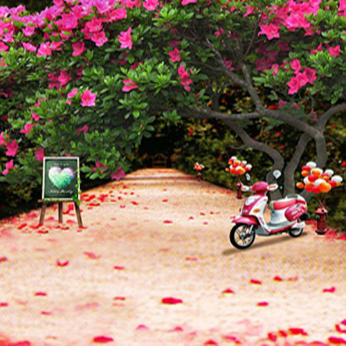 200cm150cm6 5ft5ft big rhododendron motorcycle balloon child photography background