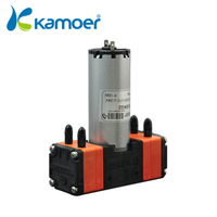 Kamoer 24V diaphragm pump with double head