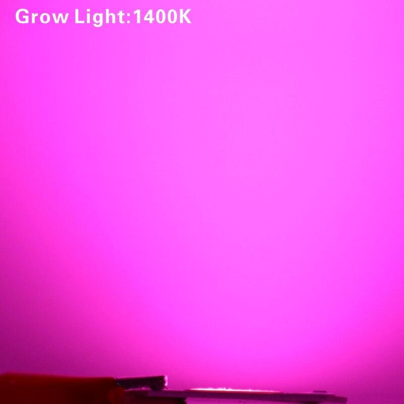 Светодиодный чип для выращивания 10 Вт 20 Вт 30 Вт 50 Вт 220 В-240 В cob Чип для выращивания света полный спектр 380nm-840nm для выращивания растений в помещении и выращивания цветов - Испускаемый цвет: Full Spectrum