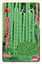 1 original pack 50g mung bean seeds,Green bean*Green Gram vegetable seeds free shipping
