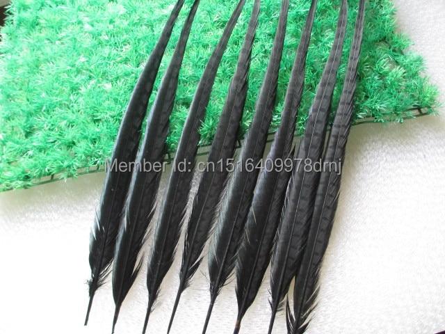 Venta al por mayor 200/lote hermosas plumas de faisán negro 20 22 pulgadas/50 55 cm envío gratis-in Pluma from Hogar y Mascotas    1