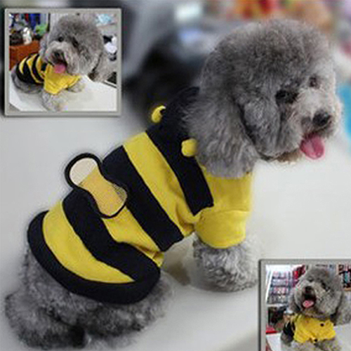 Clothing Dogs New Arrivals Cute Pet Hoodie Bee Style  My Pet World Store