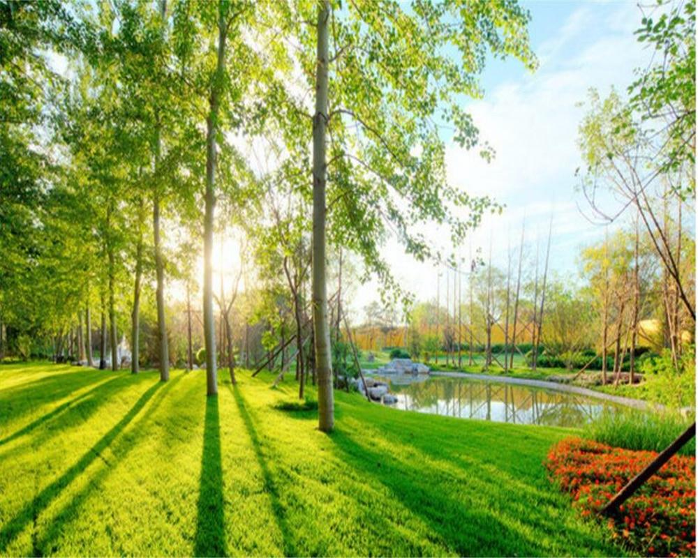Beibehang Foto Kustom Wallpaper 3D Taman Pemandangan Wallpaper