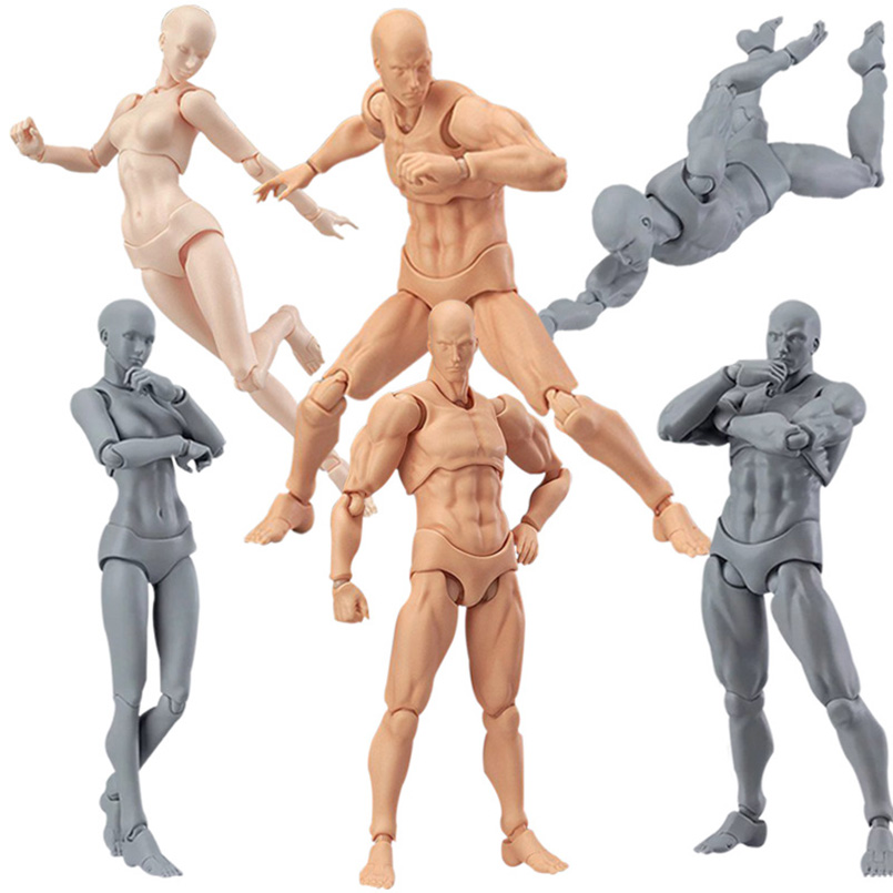 Toys Drawing Figures Ver. Body-Kun/body-Chan 15cm PVC Model Gift Kid He/she