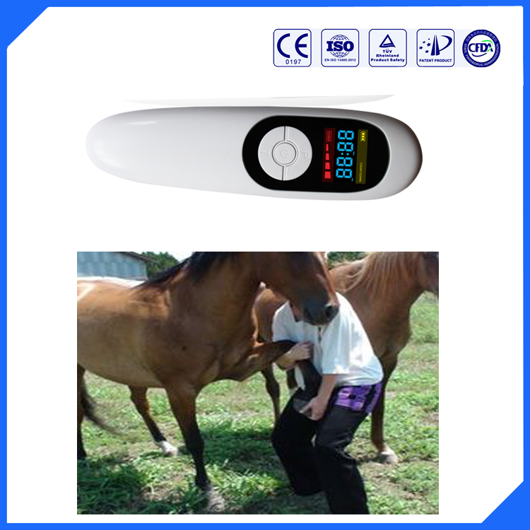 Pet pain relief home use handy cure bio laser therapy pat pain treatment device pet hurt wound healing lcd laser cold therpy watch hemodynamic metabolic soft laser therapy bio light therapy high blood pressure