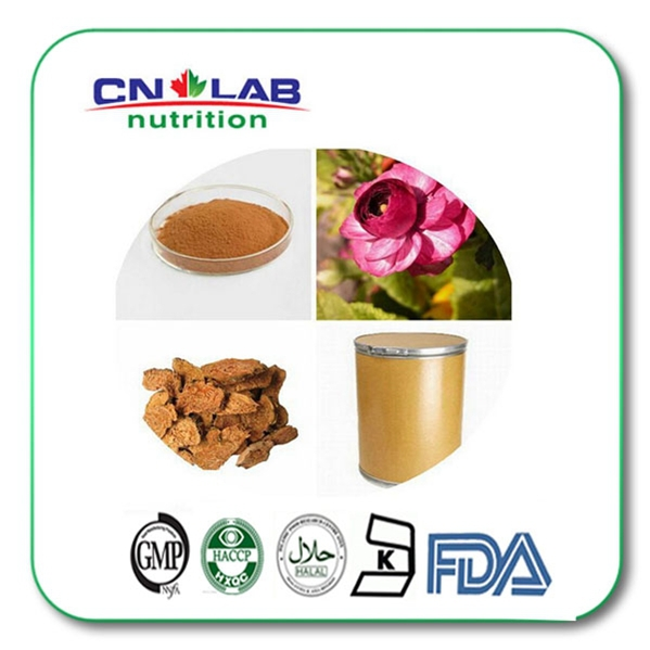 1kg High Pure Natural Rhodiola rosea powder Extract 3% salidroside TWEEN 20 EXTRA  PURE SALIDROSIDE(P)
