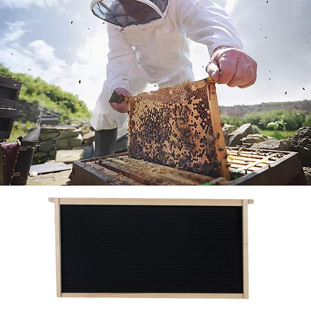 5pcs Beekeeping Bar Bee Hive Frame Avoid Agitation Plastic Interval White 37cm