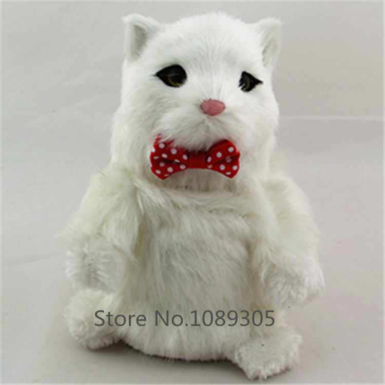 Talking Cat Toys Repeat Russian English And Any Language Talking