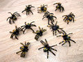 20pcs Plastic spider toy black funny tricky toy halloween scary horror decor small mini animal figures toy Children funny gadget