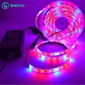 1 Set 5m/Set SMD5050 Growing Led Strip Light LED Plant Grow Lights  DC12V Red Blue 3:1, 4:1, 5:1 LED Strip for Greenhouse Light
