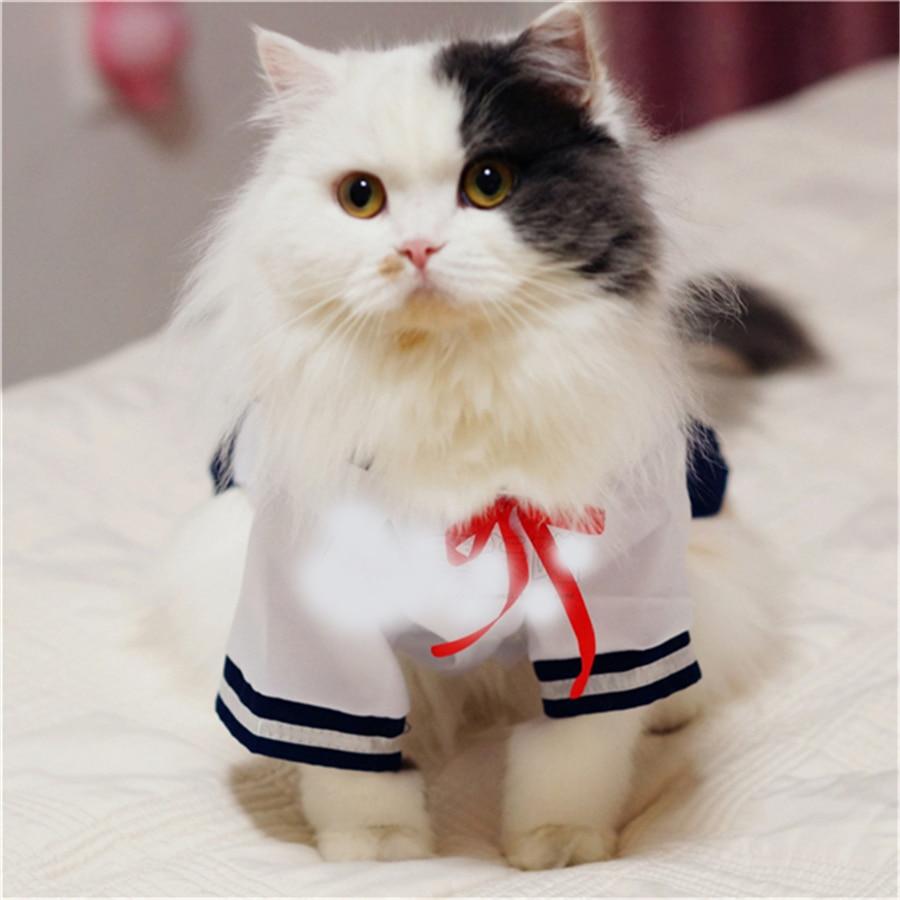 Pet Supplies Cat Clothes Cats Wear Pet Coats Blusao Clothing For