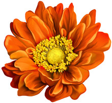 Diamond Embroidery 5D Diy Painting Orange Flowers Cross Stitch Floral Rhinestone Decoration Sunflowers