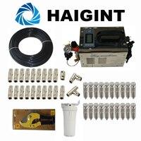 L002 Бесплатная доставка haigint Полив и орошение Опрыскиватели высокого давления 1lpm водяной насос (wholeset) система запотевание