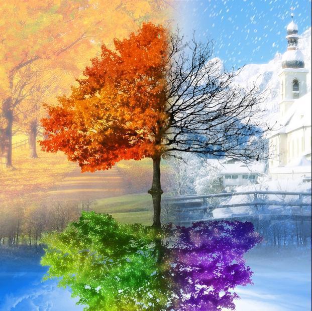 Xuân Hạ Thu Đông New-needlework-decoration-3D-diy-resin-square-full-diamond-painting-Four-Seasons-Tree-pattern-diamond-embroidery.jpg_640x640