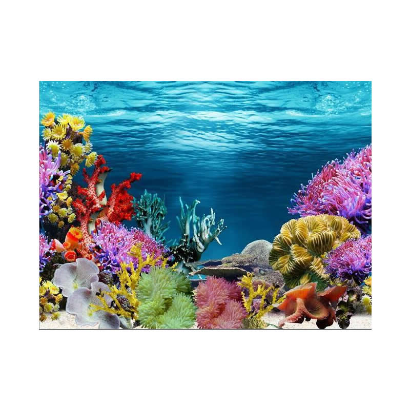 9024 15 meters roll glossy double sided fish tank poster for Aquarium background decoration