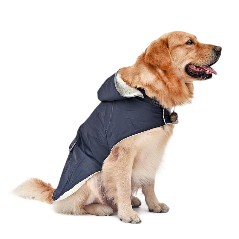 Big Dog Hoodies