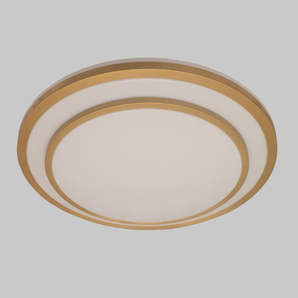 Led Ceiling Lights 36W 48W Lamp Plafonnier Moderne 2.4G RF Remote Lamparas De Techo Luminaria For Bedroom Living Room Fixture