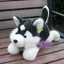 lovely plush gray Husky dog toy high quality lying husky dog doll about 60cm