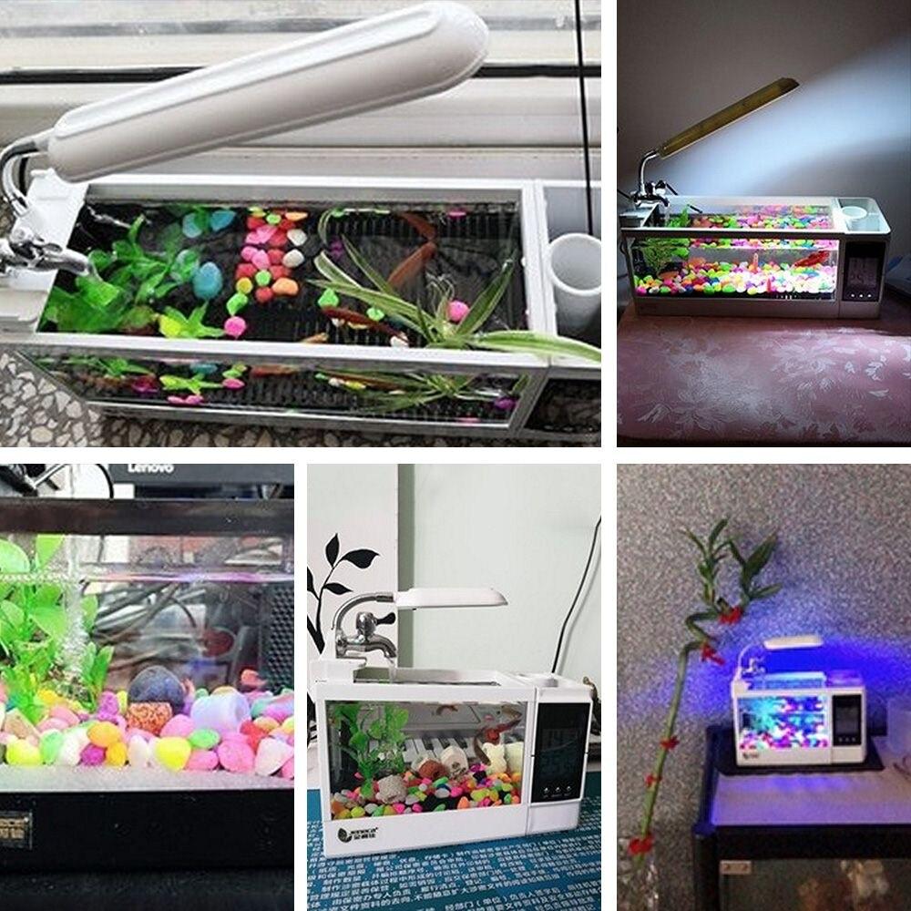 Mini Aquarium d'aquarium d'aquarium d'usb 220V avec l'écran d'affichage à cristaux liquides de lumière de lampe à LED et les réservoirs de poissons d'aquarium de bureau d'horloge - 6