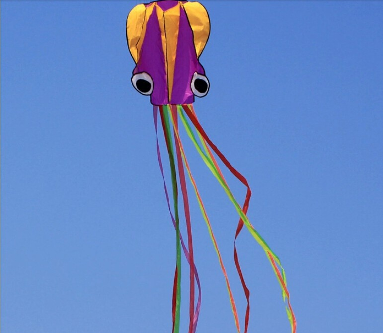 Outdoor Fun SportsNEW Nylon Cloth 4m Power Octopus Software Kite With Handle And Line Good Flying
