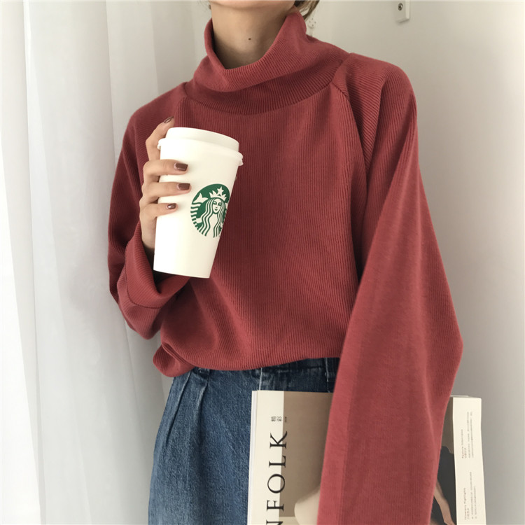 Autumn New Women Sweater Casual Loose Turtleneck Knitted Jumpers 18 Long Batwing Sleeve Crocheted Pullovers Streetwear Winter 15