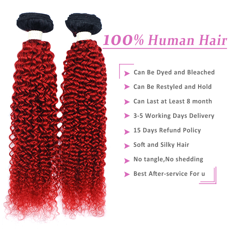 Pinshair 1B Red Human hair Bundles With Closure Burgundy Ombre Brazillian afro kinky curly Hair 4 Bundles With Closure Non-Remy