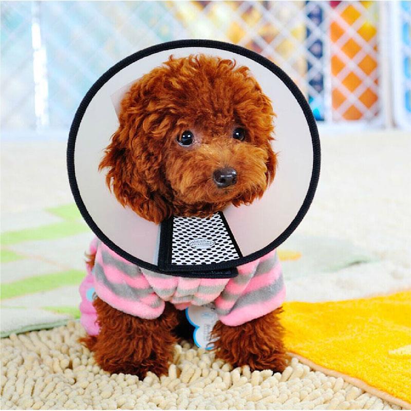 7 Tamaño Del Perro Gato Cómodo Baño Cirugía Anti-Mordedura de Cuello Protector d