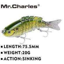 Mr.Charles Fishing Hard Swimbait