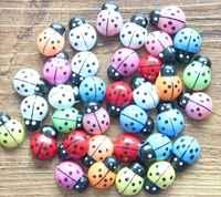 100 sztuk/Bonsai/terrarium dekoracji/rzemiosło żywicy/fairy garden gnome/doniczka/małe beetle /małe biedronka/piękne prezenty