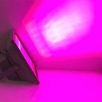 High Power 40W 60W 100W LED Grow Light Blue 460nm Red 660nm Hydroponics Plant Flood LED