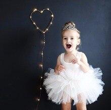 Baby Girl Ballet Tutu Dress Kids Sleeveless Tulle dress toddler girl Princess party children Leotard tutu Dancewear