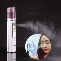 Portable Handy Mist Sprayer Vapor Facial Body Nebulizer Mini USB Nano Moisturizing Skin Care Face Steamer