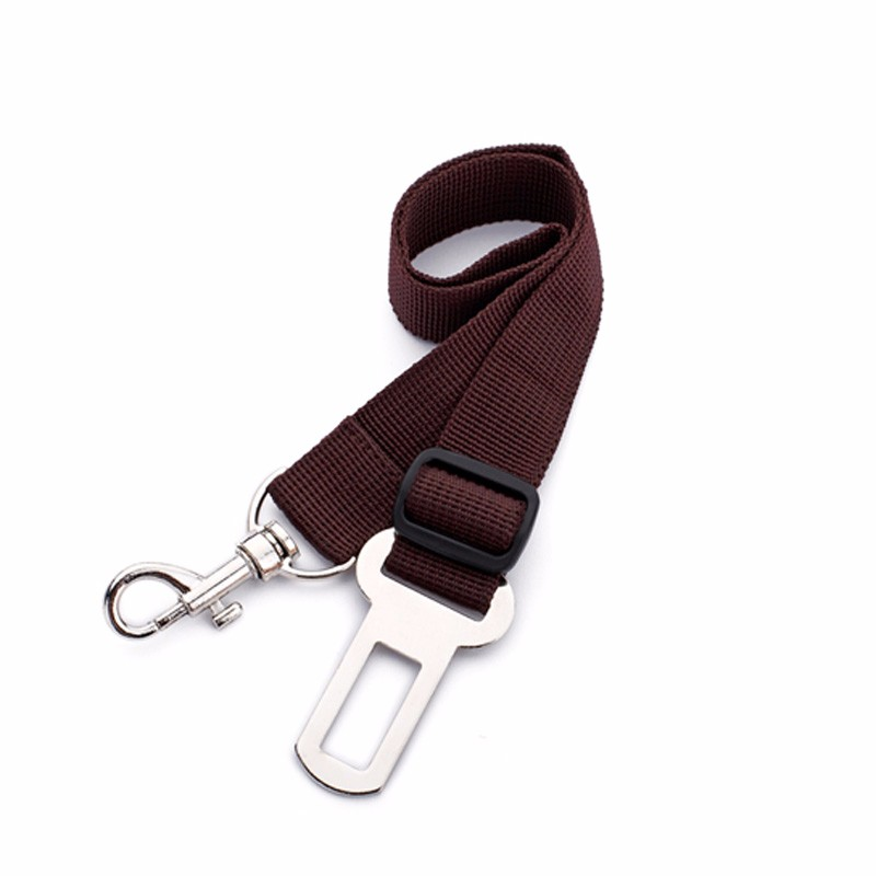 ceinture pour chien auto