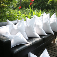 Entry Luxury Goose Down Feathers Cushion Insert Core Throw Pillow Core 5% Down Pillow Filling Downproofness