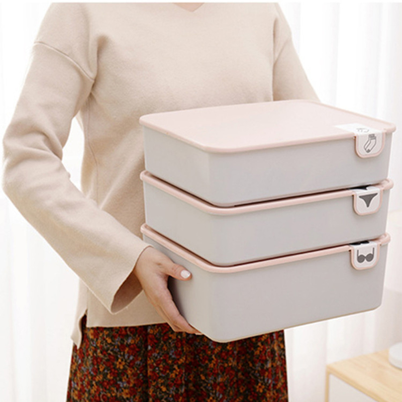 Underwear Storage Box with Lid 1/10/15 Grids Home Wardrobe Drawer Closet Organizer Case for Socks Panties Bra Home Storage Box(China)