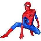 Ultimate Spiderman C...